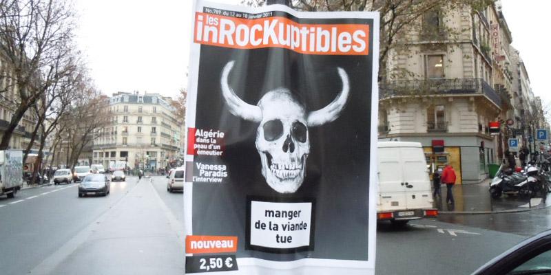 Les Inrocks Boarding Anolis 2