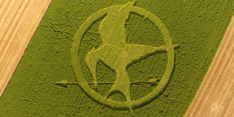 Hunger games brand content crop circle