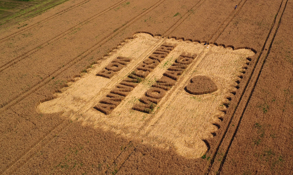 photos-article-lu-anolis-crop-circle-brand-station-4