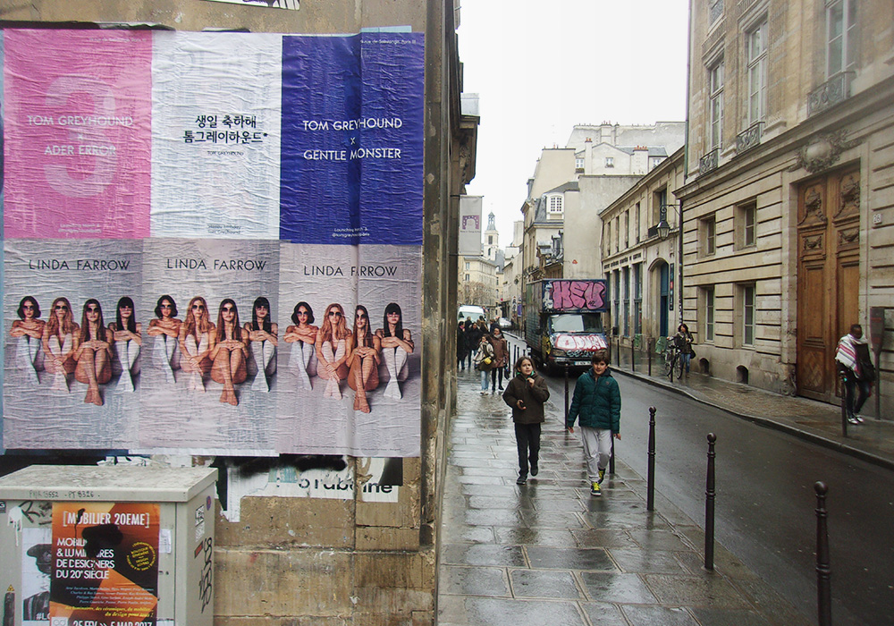 Photos-Article-Linda-Farrow-Milan-Paris-NewYork-affichage-sauvage-Anolis-13