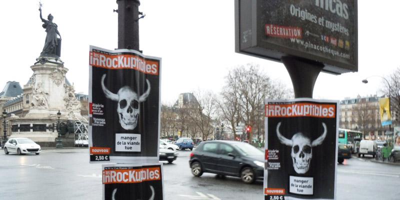 Les Inrocks Boarding Anolis 3