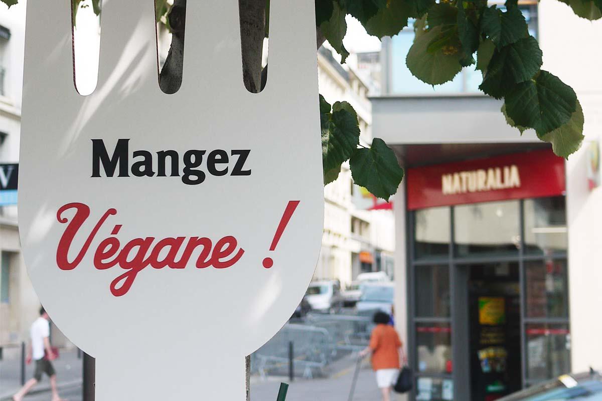 Naturalia-Vegan-Anolis-Fourchette-street-marketing-Photo-12 copie-Light