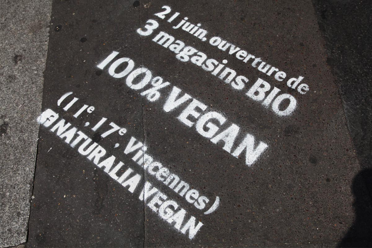 Naturalia-Vegan-Anolis-Fourchette-street-marketing-Photo-5-Light