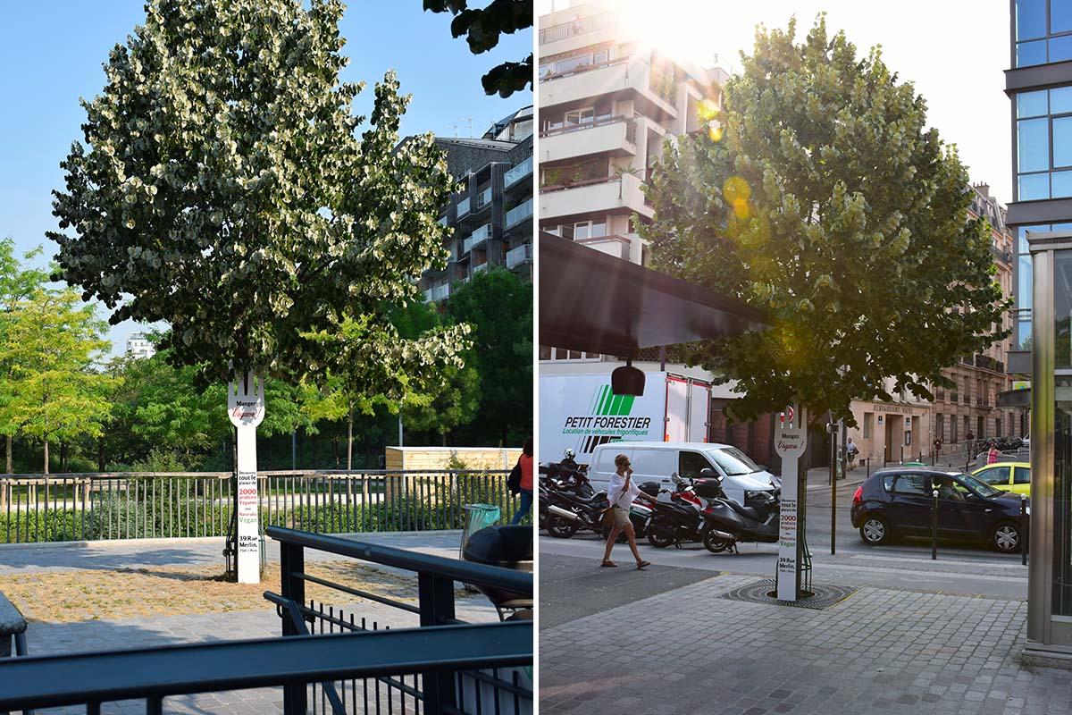 Naturalia-Vegan-Anolis-Fourchette-street-marketing-Photo-8-Light