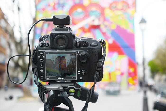 Photos-Article-Anolis-Diesel-DaCruz-make-love-not-walls-17-Light